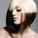 trumpu plauku 1 (2)