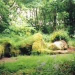 heligan 1 (11)