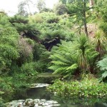 Lost Gardens of Heligan 1