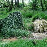 Pasakiškas Lost Gardens of Heligan parkas