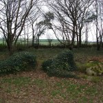 heligan 1 (3)